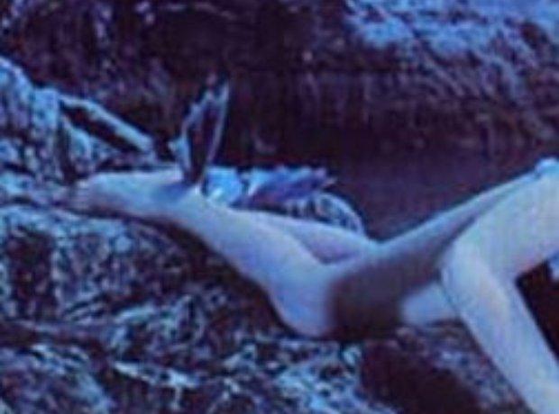 album cover quiz 1975
